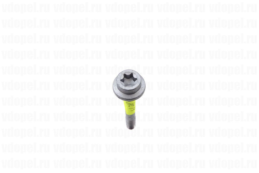 GM 12992403  - Болт М10х80